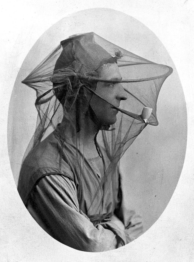 Mosquito nets used to be worn as veils in the early 20th century. Maybe it's time for mosquito netting to make a fashion comeback. (Credit: Wellcome Library. CC BY 4.0)